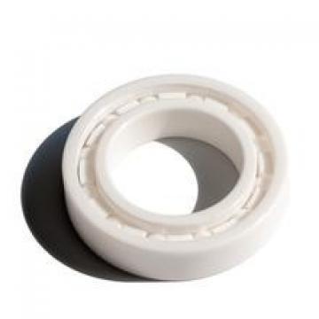 50*110*27mm Zirconia deep groove ball bearing 50x110x27 mm ZrO2 full Ceramic bearing 6310