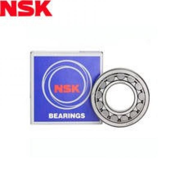 NJ 304 ET Cylindrical roller bearing NSK NJ304 ET Bearing Size 20x52x15 #1 image